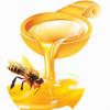 Мед при кормлении. Польза или вред?