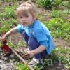 Чем занять детей от 2 лет на даче летом
