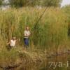 ловля карася на поплавочную удочку