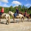 как ездить на лошади