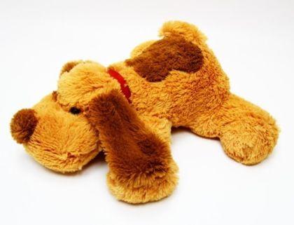 собака желтая