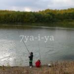 Выращивание червей для рыбалки