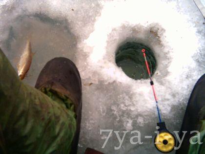 первый лед ловля плотвы