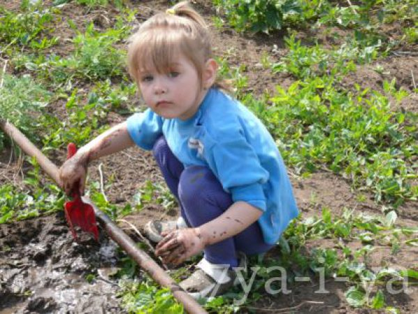 Чем занять детей от 2 лет