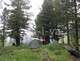 Ночь в палатке летом
