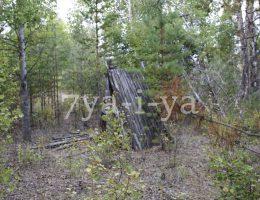 как сделать шалаш в лесу