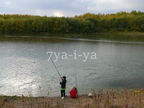 Кривда для рыбалки своими руками 3